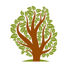 Vector illustration of stylized branchy tree isolated on white