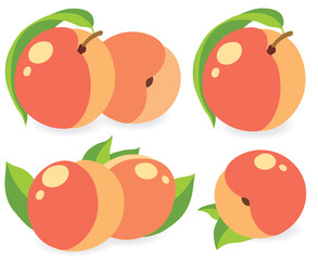Peaches vector illustration