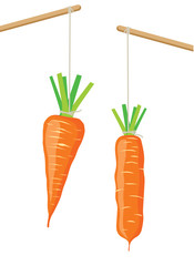 Carrot on a stick, two vector illustrations