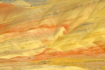 Painted Hills Yellow