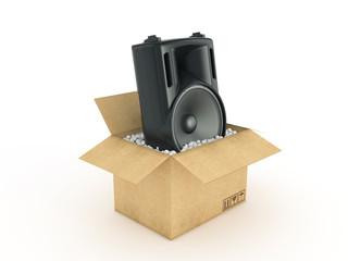 speakers in cardboard box