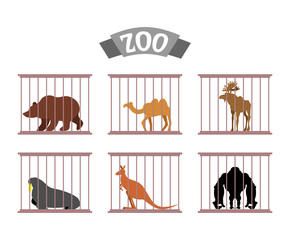 Zoo. Collection of wild animals in cages. Beasts behind bars. Be