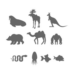 Set Wild animal silhouette. Animals from Zoo and fishes