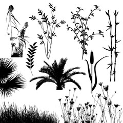 Plant collection silhouette for designers on white background, vector illustration