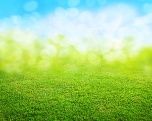 Acrylic Prints Spring grass background