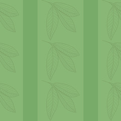 Romantic wallpaper, green, with lines and leaves