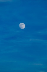 Real moon in the blue sky , evening