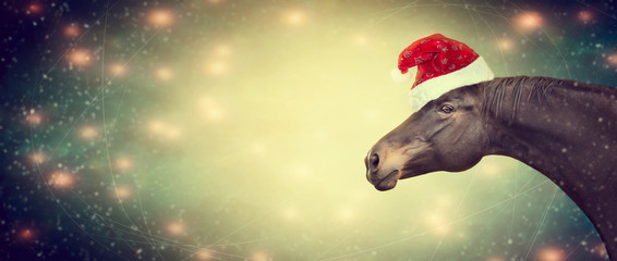 Ghristmas background with black horse and Santa hat, banner,  toned