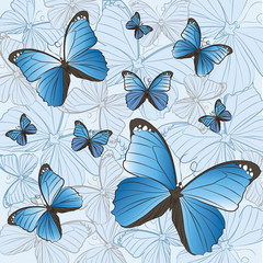 Pattern of blue butterflies