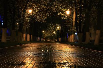 alley autumn city landscape night rain