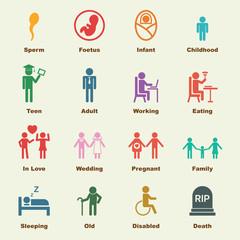 human life elements