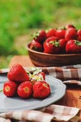 fresh home growth organic strawberries on plate in summer garden