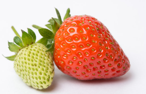 red and green strawberry