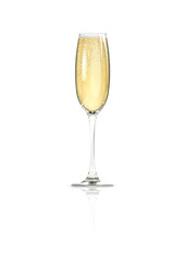 Champagne glass / 3D render of elegantly lit glass of champagne