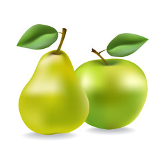 Apple and pear. Vector illustration created using gradient meshes