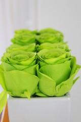 Maison & décoration fleurs