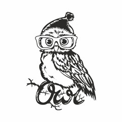 Clever owl with glasses