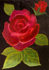 Red rose on black, oil painting