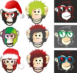 face monkey