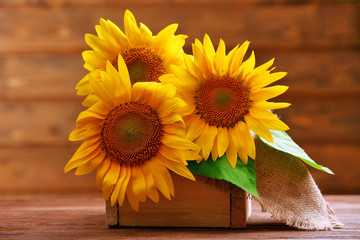 Beautiful bright sunflowers in crate on wooden background