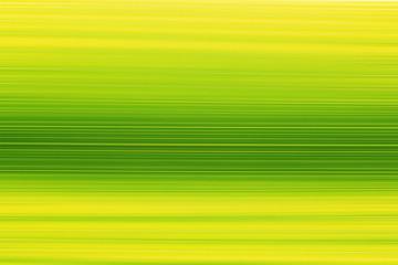 blurred green organic texture