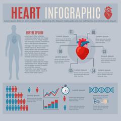 Human Heart Infographics
