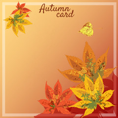 Postcard autumn, autumn leaves, a bunch of leaves