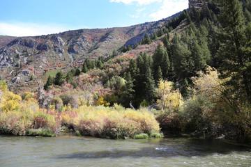 Wall Mural - Mountain River Fall Colors