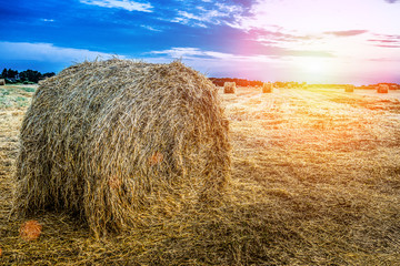 Haystack on an autumn field
