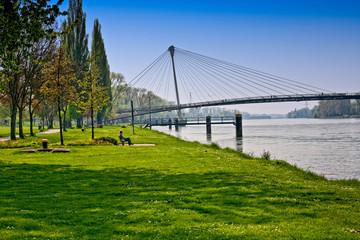 Rhein Mimram Brücke Passerelle des Deux Rives  Kehl Straßburg