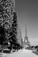 Eiffel tower, Paris, black and white image
