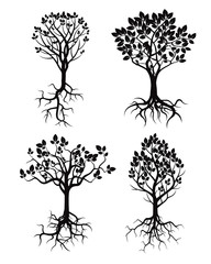 Set of Black Tree and Roots. Vector Illustration.