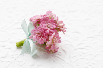 Beautiful tiny bouquet of pink kalanchoe blossfeldiana flowers a