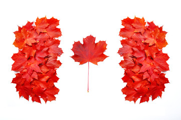 Canadian flag made of leafs