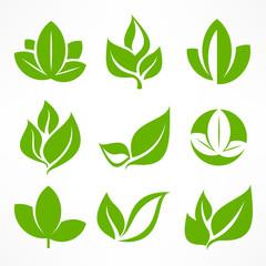 Green leaf signs, design elements, illustration.