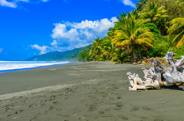 Wild beach at Corcovado Jungle in Costa Rica Fototapete