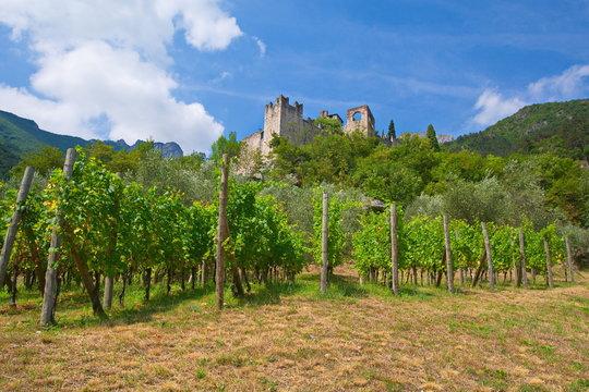 Burg Castello di Avio