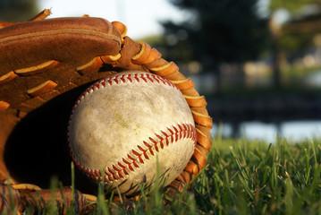 Baseball Glove Laying In Grass