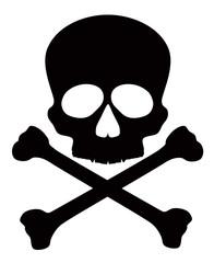 Skull with Crossbones Vector Illustration