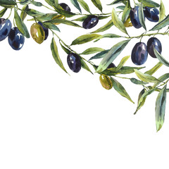 Greeting card with branches of olive tree