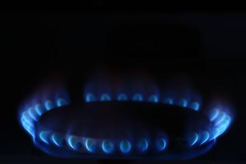 burner gas cooker