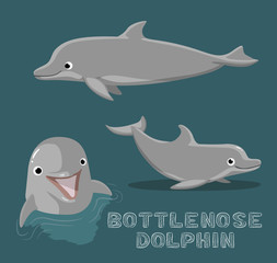 Bottle Nose Dolphin Cartoon Vector Illustration