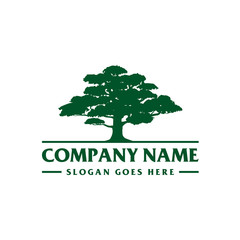 Cedar Tree Logo Template