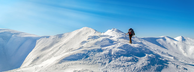Tourist rises to the top of the snowy ridge. The sky is clear, sunny. Winter. Ukrainian Carpathian Mountains. With sun rays Wall mural