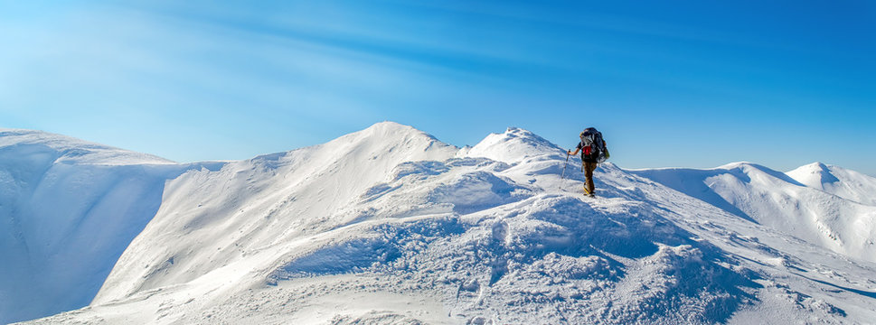 Tourist rises to the top of the snowy ridge. The sky is clear, sunny. Winter. Ukrainian Carpathian Mountains. With sun rays