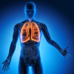 Mensch mit Lunge