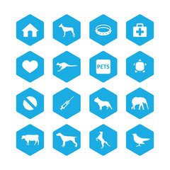 animals, pets icons universal set