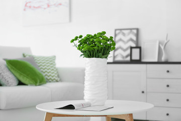 Beautiful green chrysanthemums in vase on table in room