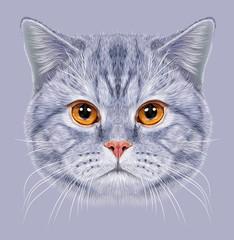 Illustration of Portrait British short hair Cat. Cute grey tabby Domestic cat with orange eyes.