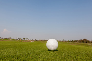 Golf ball on grass with the green background.